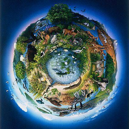 ecosistema.jpg.0c7ce19da5a5b607fb61dc897